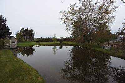 Irrigation Pond - the pumphouse powers the automatic sprinklers for the property. Water comes in via nearby canal.