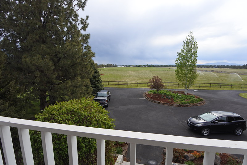 The east-facing view from the little porch. The pasture is ours.