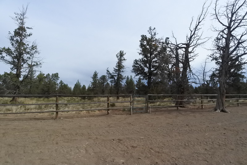 Gate in the paddock that opens to trails in the BLM lands.