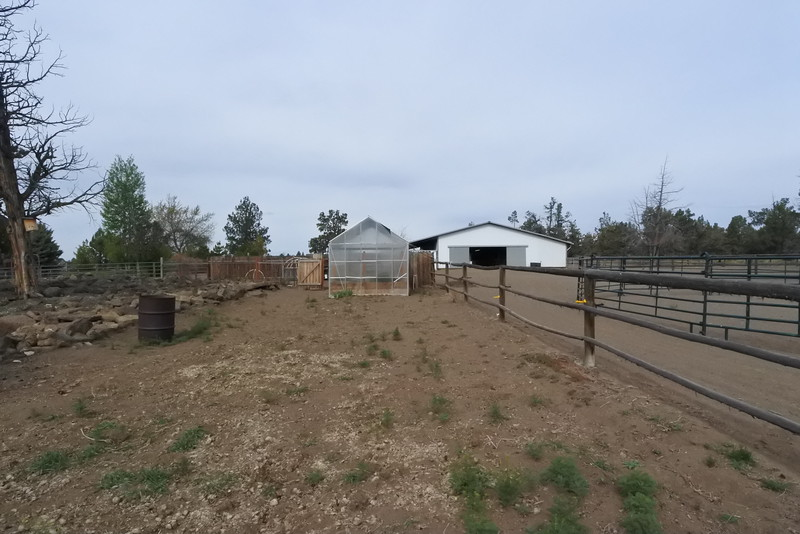 Back of the garden area looking back at the barn.