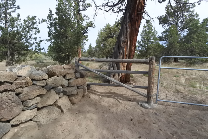I like how these fences come together - NW corner of property.