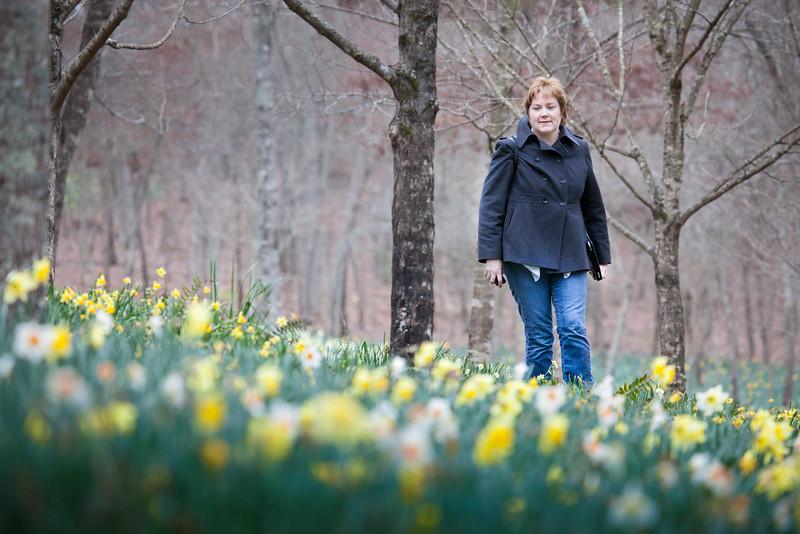 A Walk in the Daffodils