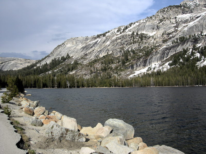 We headed up the newly opened Tioga Pass Road<br /> <br /> Tenaya Lake looked chilly!