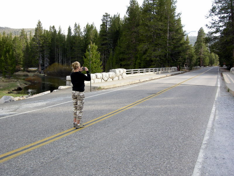 And in the role of 'Japanese Tourist': Maggie, taking photos of everything and everywhere<br /> <br /> There was no one on Tioga Pass Road on an early season Tuesday afternoon