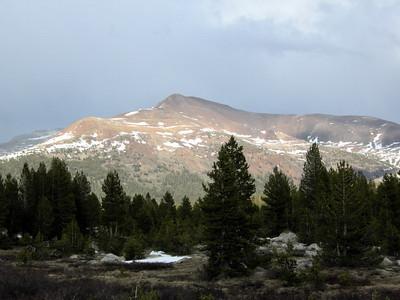 Mt Gibb