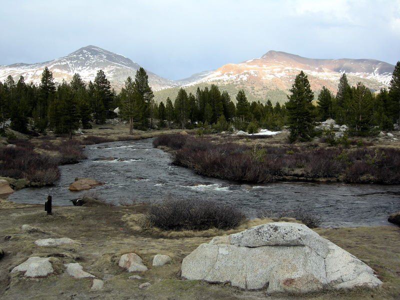 Tuolumne Meadows and Mt Dana and Mt Gibb