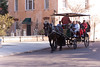 Horse Drawn Tour in Charleston