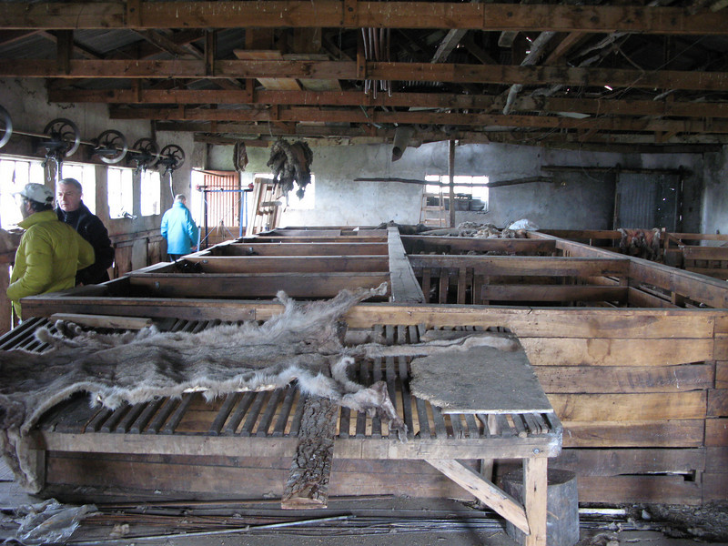 Sheep shearing shed at the estancia
