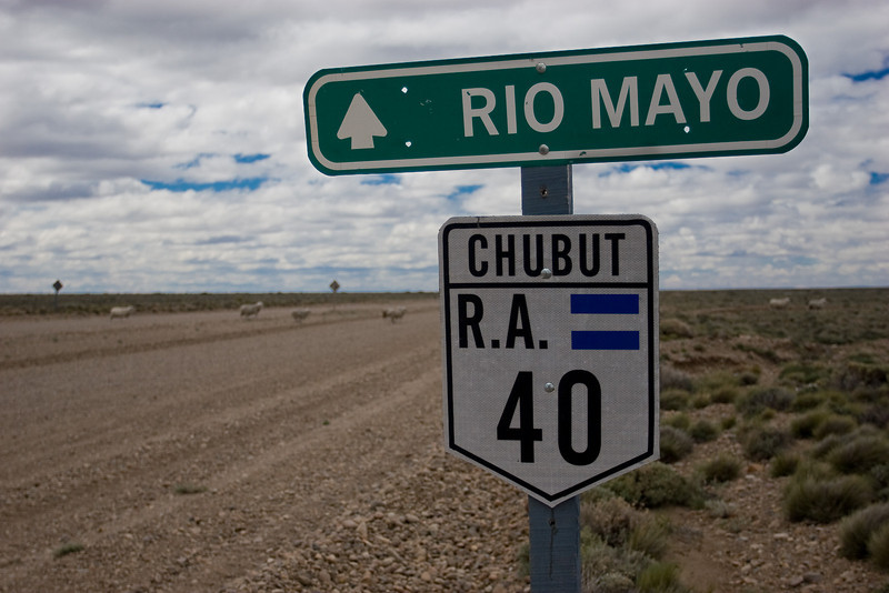 The 1000 km road trip through Northern Patagonia in Argentina & Chile. Starting with Ruta 40/Argentina (note the sheep!)