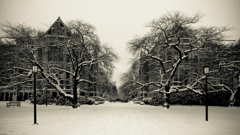 Snow blankets the University of Washington