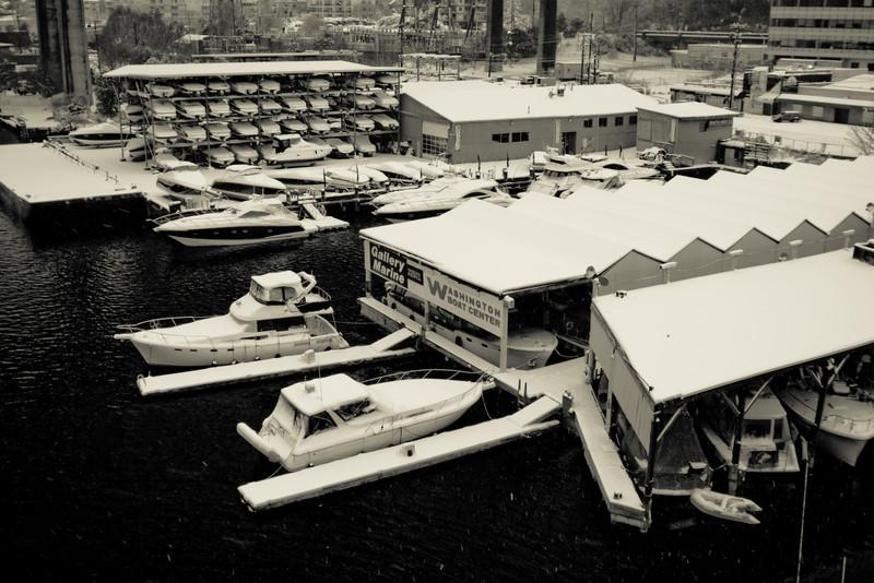 Boats sitting in a frigid Lake Union marina