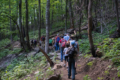 Hike today on Shumont Mountain with Friends of Chimney Rock-13