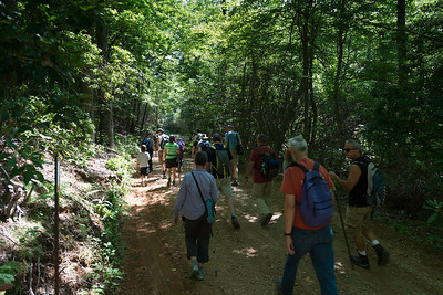 Hike today on Shumont Mountain with Friends of Chimney Rock-3