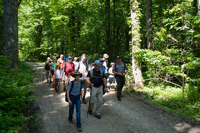 Hike today on Shumont Mountain with Friends of Chimney Rock-2