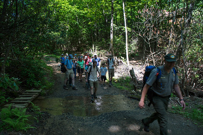 Hike today on Shumont Mountain with Friends of Chimney Rock-4