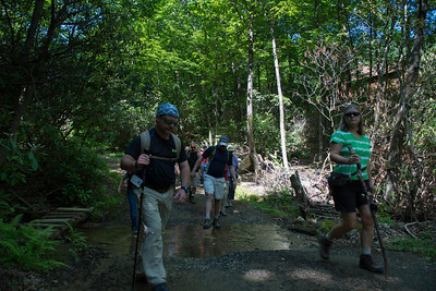 Hike today on Shumont Mountain with Friends of Chimney Rock-6
