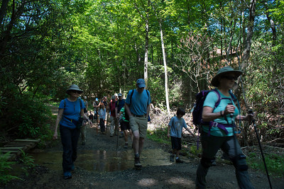 Hike today on Shumont Mountain with Friends of Chimney Rock-5