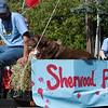 Sherwood Robin Hood Parade 2009-19