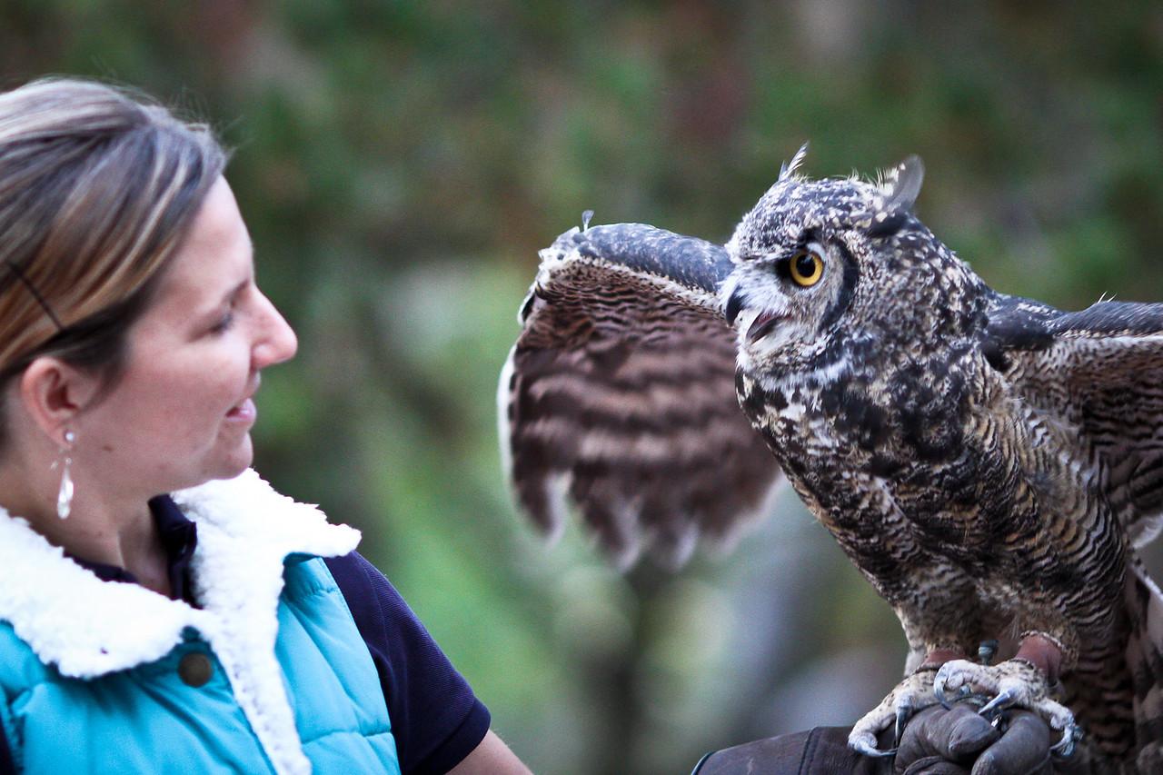 St Francis Owl Program 2011-7