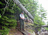 CAC-MAN<br /> Here I am working up a work order this fallen-down tree on Jordan Pond. There was no need to actually stand under said tree, but I thought it would lend a bit of humor to the process.