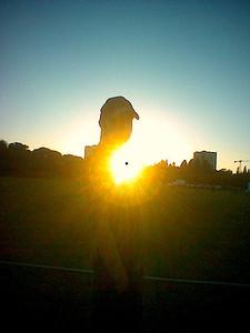 park_andyshine