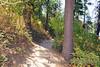 A very pretty trail.