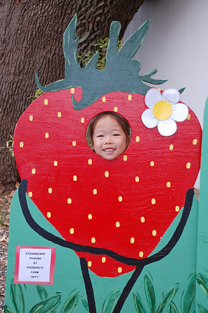 March 25, 2011 - Picking Strawberry at Frobergs with friends