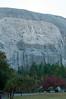 _KD38933 Stone Mountain GA 2011-11-05
