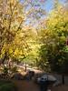 IMG_6295 Stone Mountain GA 2011-11-05