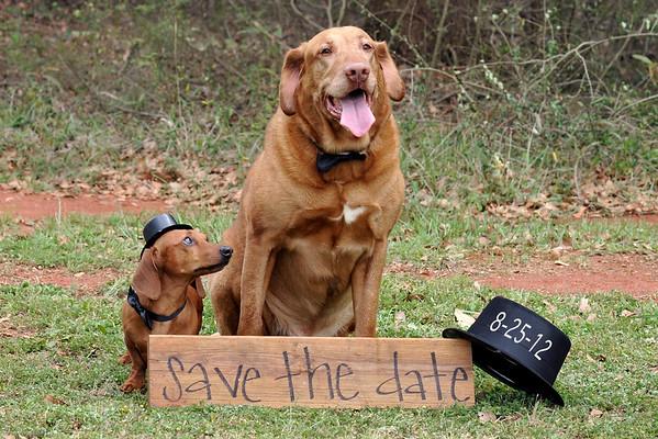 3 13 12 Jeri Lee engagement 241 date