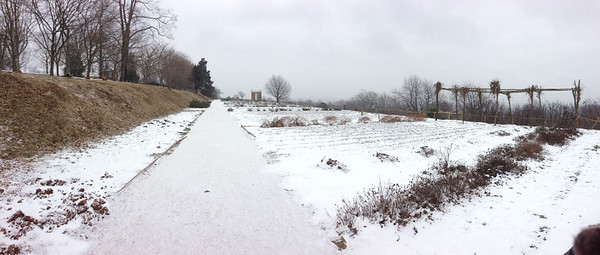 We had Monticello all to ourselves on a snowy afternoon! Followed by a hot tottie in Belmont that warmed us to the core.
