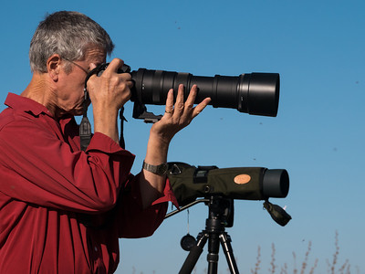 Birdwatching at Western Treatment Farm