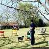 Oscar and all the dogs turn to watch the nonsense that is Chris driving the 4-wheeler with no hands.
