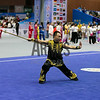 8th World Kungfu Championships