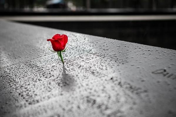 9/11 Memorial and Museum: 20151028