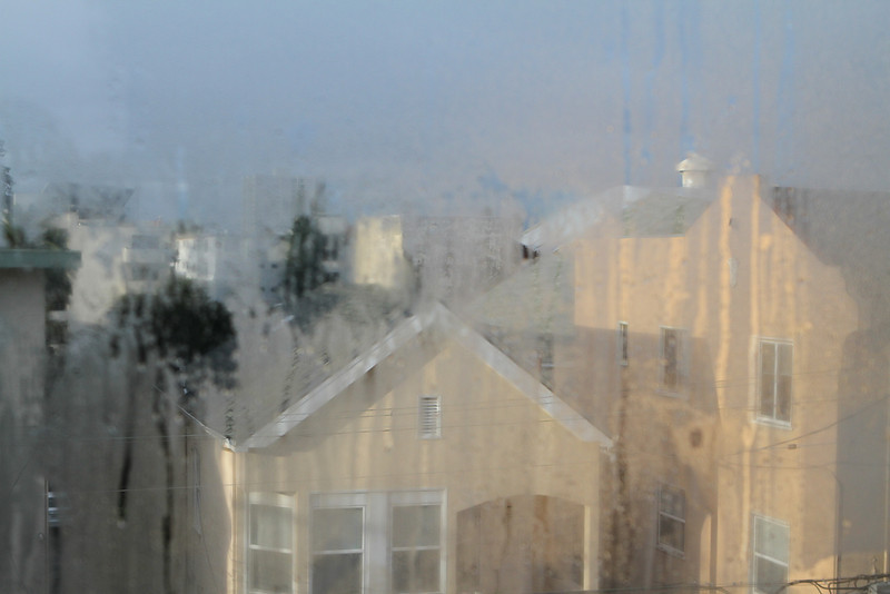 Morning Bay Area light through soft window