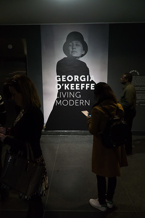 "Georgia O'Keeffe - ""Living Modern""—the exhibit just opened at the Brooklyn Museum. It features her artwork and focused on her signature fashion style which rejected society's gender mores. On display is clothing that she often designed and then made herself as she was a prolific seamstress. There are also multitude of photographs taken of her by her husband, Alfred Stieglitz, and by  many other great photographers. Highly recommended."