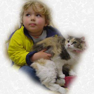 "Ellie Mae is adopted,  5-119-04Ellie Mae-- A long haired dilute Calico that has had too many homes and been left behind too many times to count. Well she's been abandoned and homeless for the last time. We are looking for a loving patient home to love and cherish this beautiful girl ""forever""."