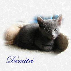 Dimitri adopted 8/04