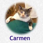 Carmen adopted 12/9/04.