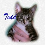 Todd adopted 11/20/04.