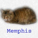 Memphis adopted 12/4/04.