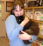 Randi (aka Random) gets a new home and family beginning 12-6-04.