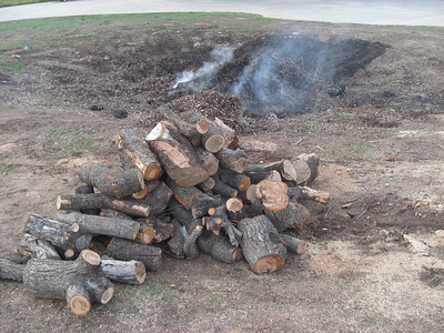 Pile of firewood and some ashes left,  time to pack and go home ! :) January 29, 2010
