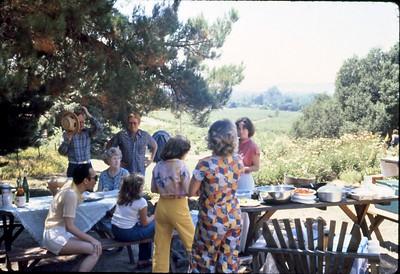 Al's picnic