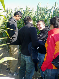 How many engineers does it take to figure out the maze?