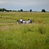 Walking Pickett's Charge