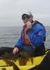 Kelp tasting on the Monterey Bay, August, 2011