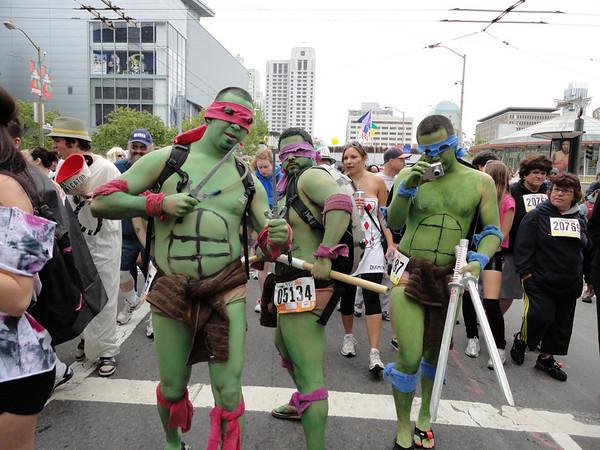 go Turtles