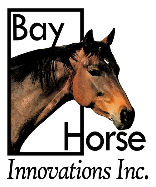 revised BHI logo color